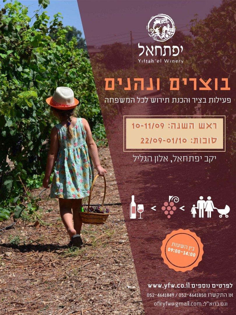 winery roshhashana-01-01