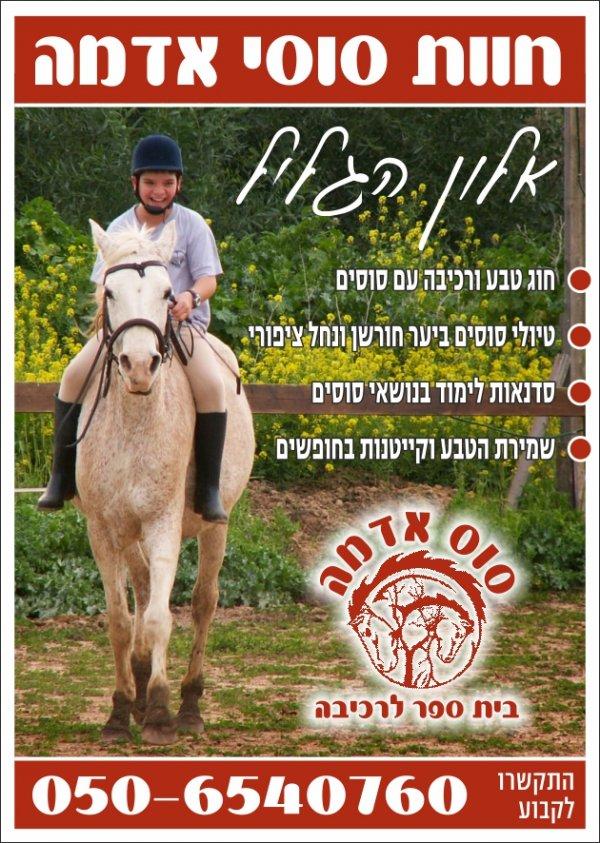 חוג סוסים באלון הגליל