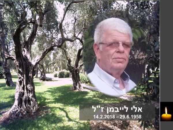 אלי לייבמן