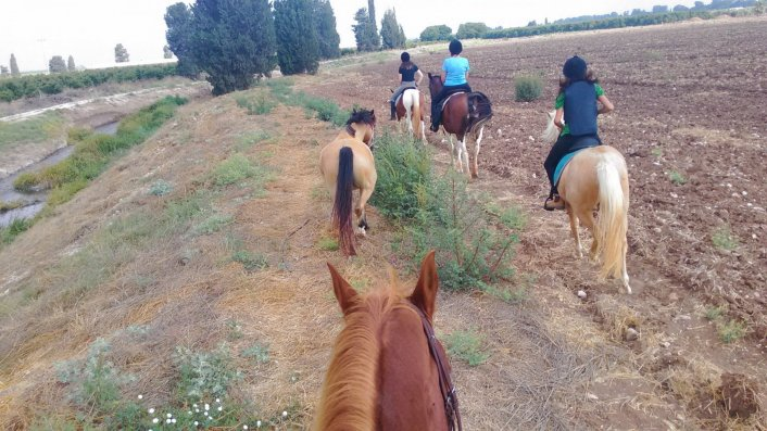 סדנת קיץ בחווה של מירי