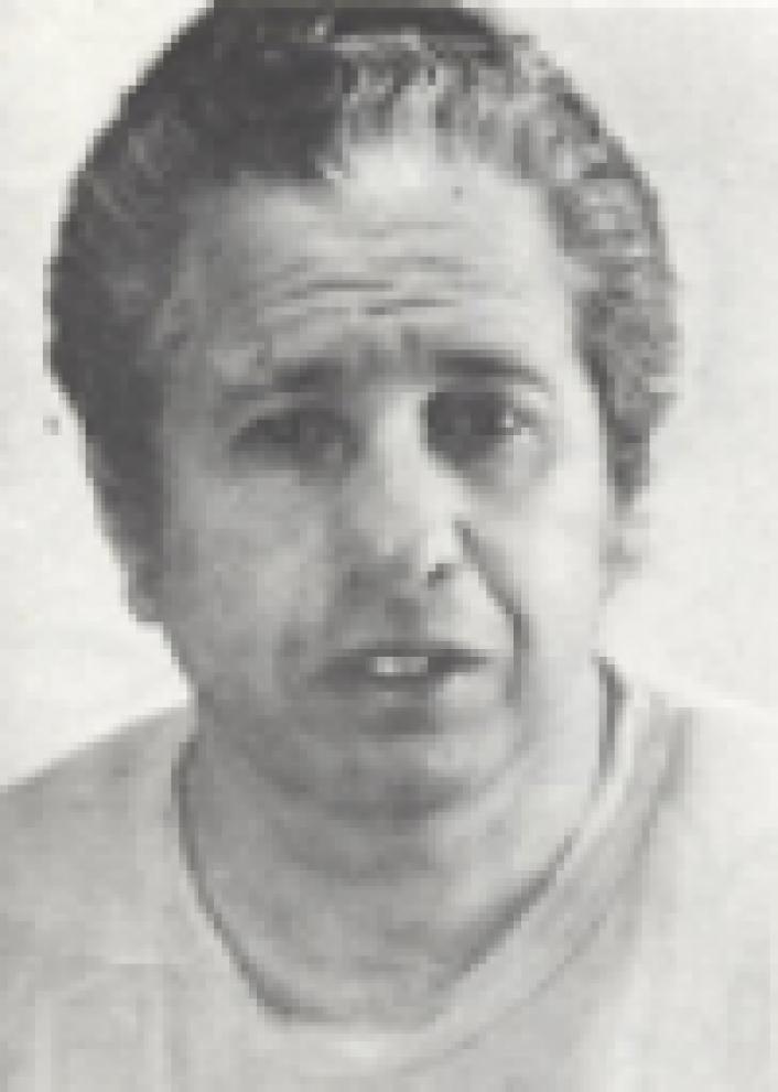 צבי כהן