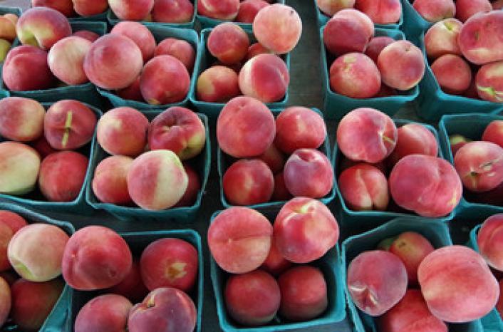 שוק תוצרת העמק יום שלישי 25.4 בין השעות 16:00- 20:30
