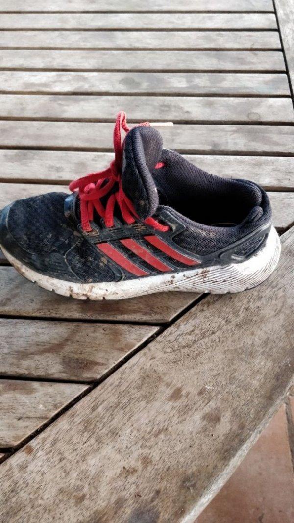 מי ראה את נעל ימין? אדידס 32 שרוך אדום? נעלמה כנראה בעזרת כלבלב...