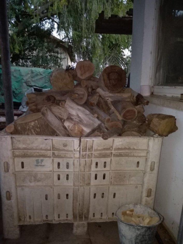 עצים להסקה - אסף זמיר
