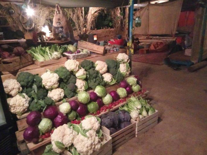 ברוקולי טרי ועוד מגוון ירקות חורף