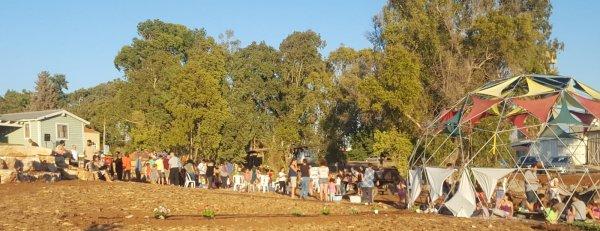 הוכרת תודה וצפי סל ירקות אורגני מהחווה