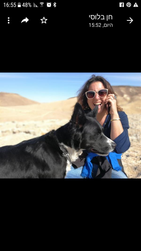 מחפשים אחר כלב שאבד בכפר יחזקל