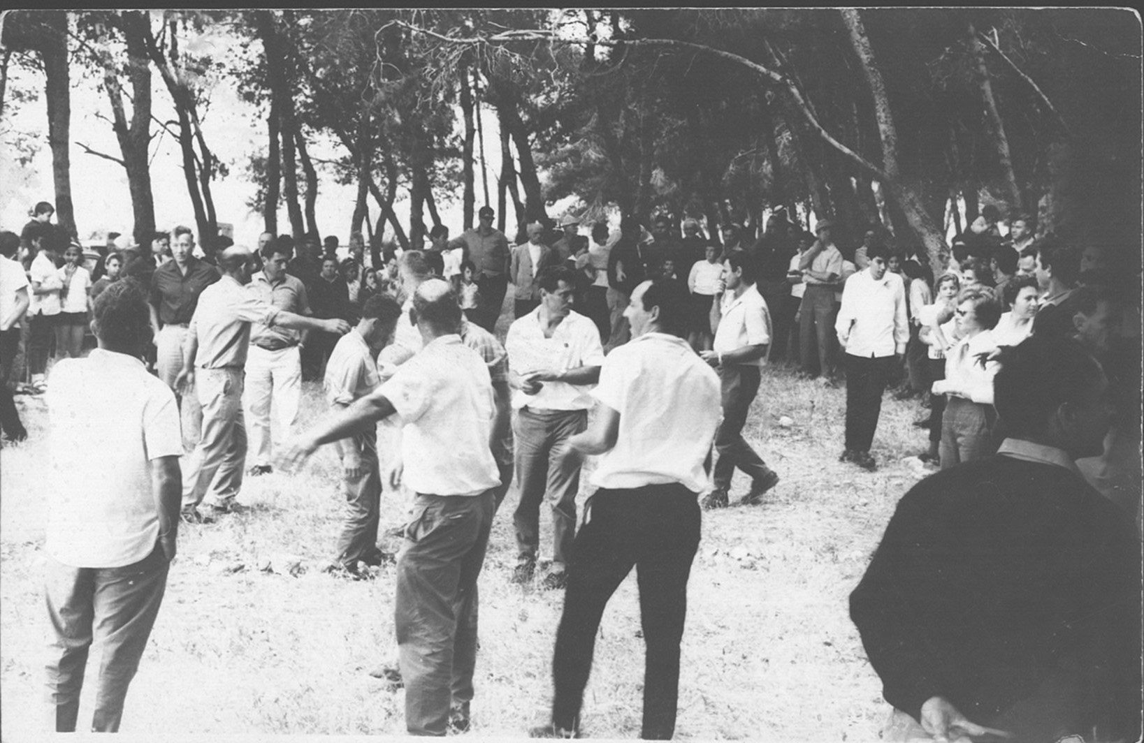 פקניק 1965 משחק עמודו מבוגרים