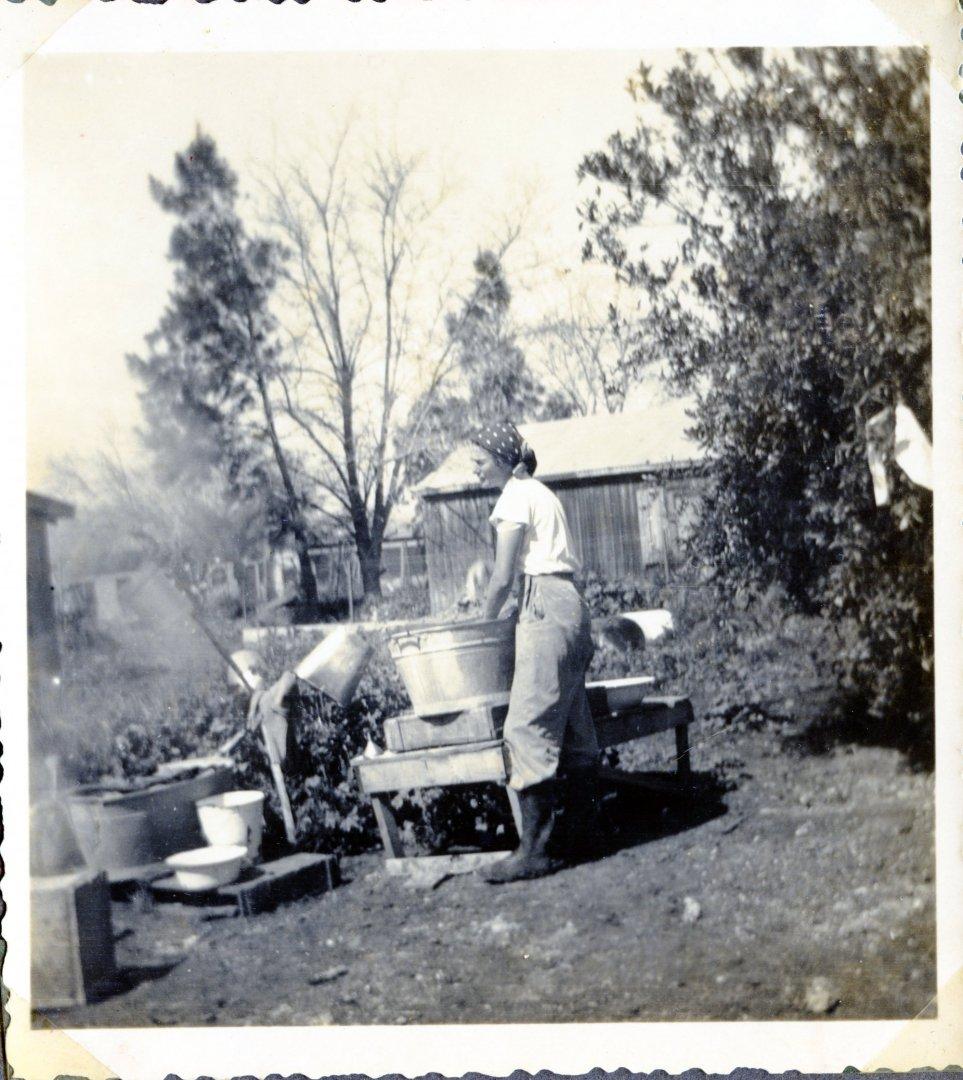 עמוד 2 אלבום רגינה הדסה מכבסת בחצר