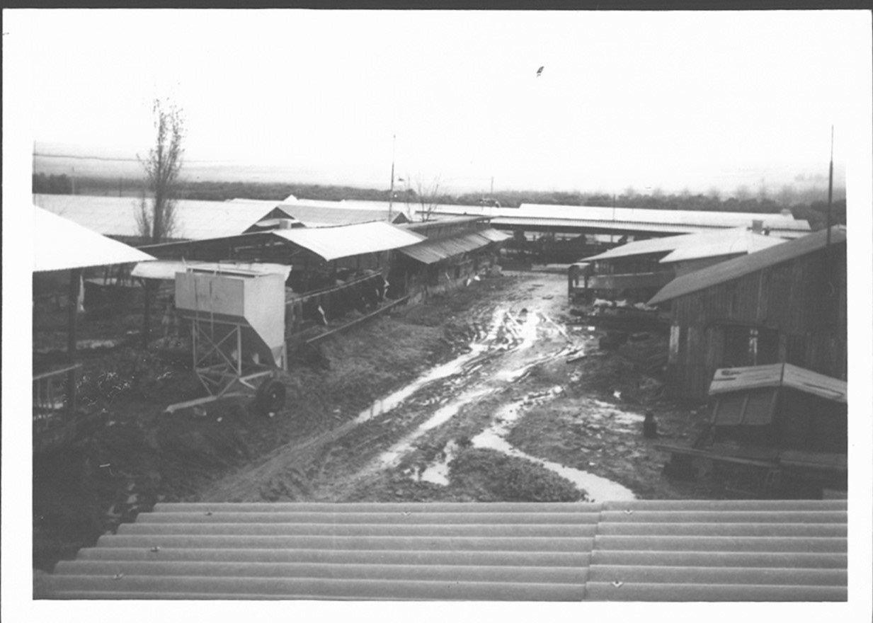 חורף 1970 חצר משק ירדנאי