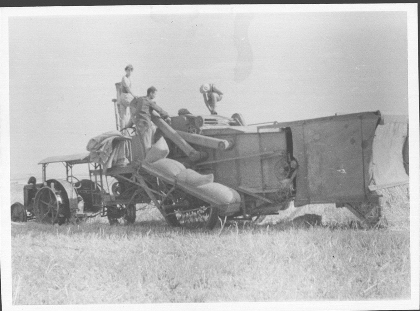 29 00381109 tif  קציר בקומביין 1940