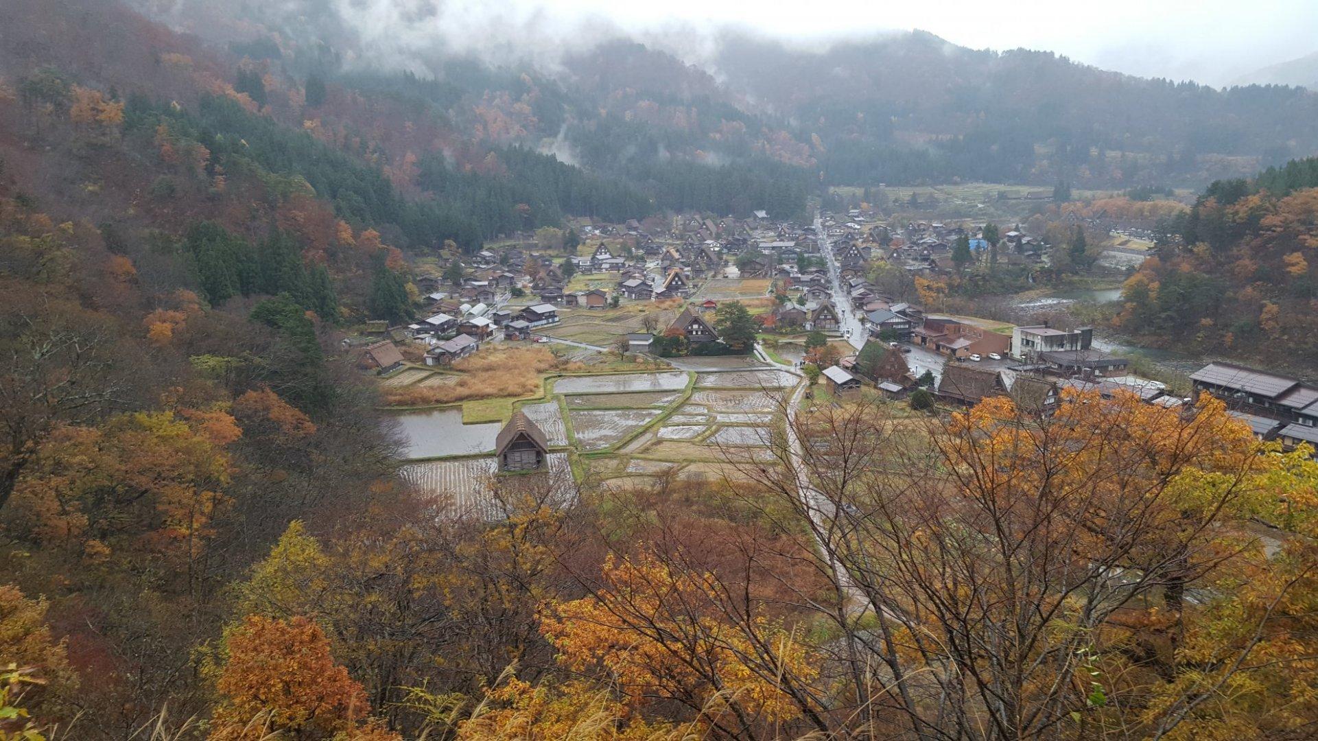 כפר יפני