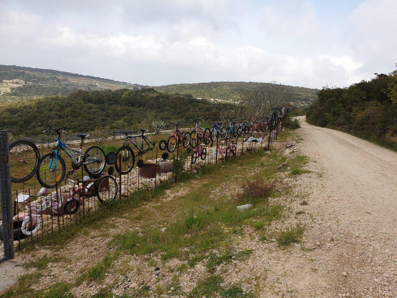 אופניים על גדר