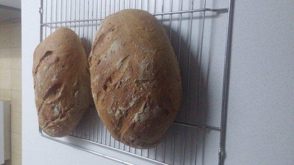 מכירת לחם.