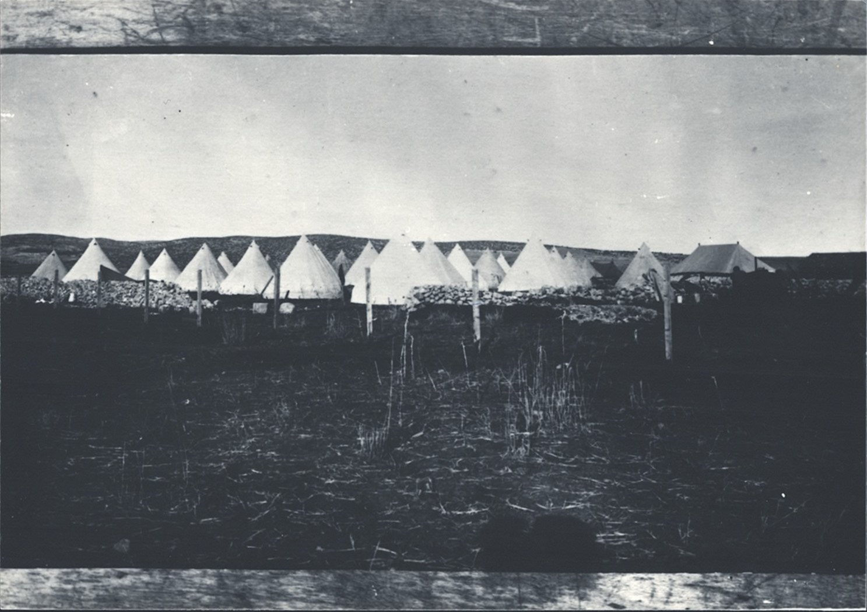 2 00380014 tif   אוהלים