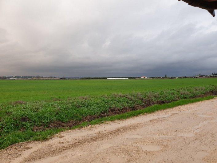 מוריד הגשם 20 בינואר 2020