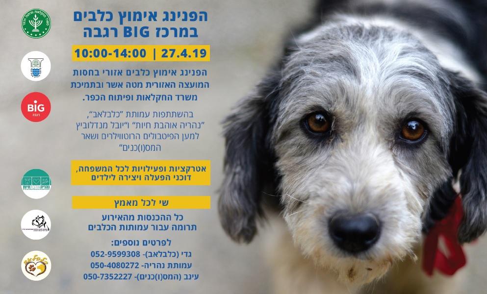 הפנינג יום אימוץ כלבים 27.4