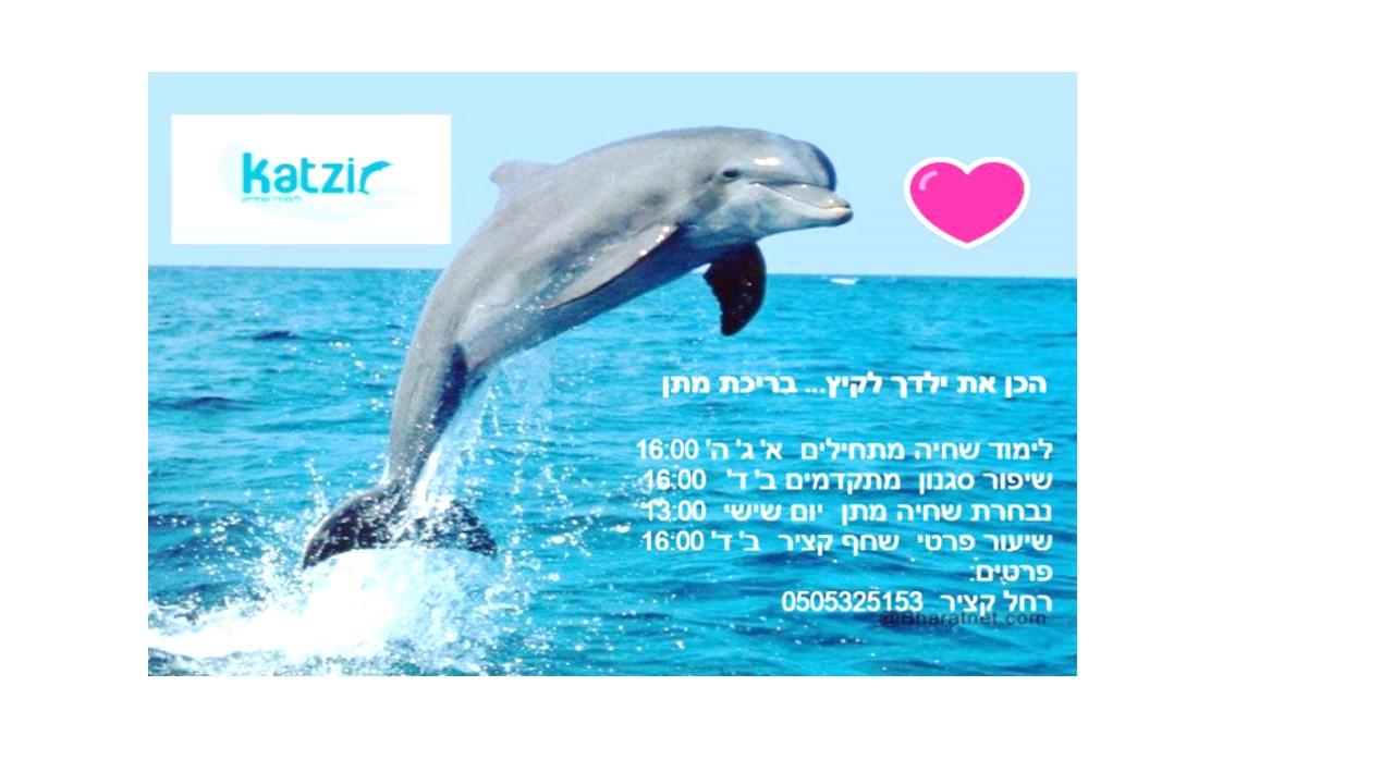 דולפין פרסום