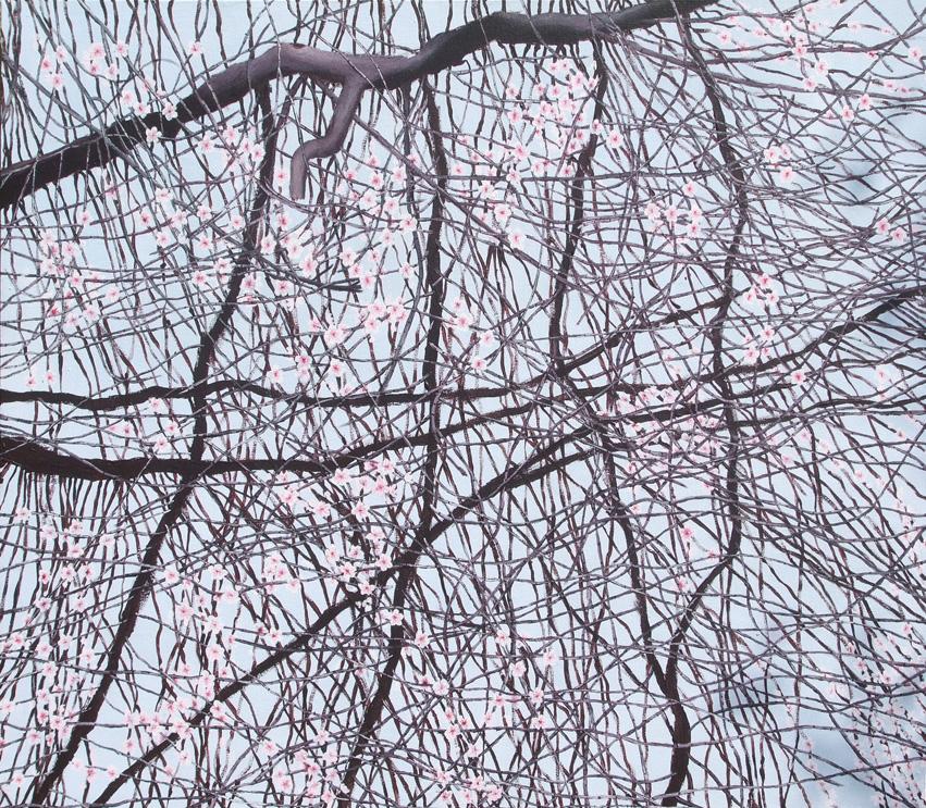 almond-blossom-72 AGz