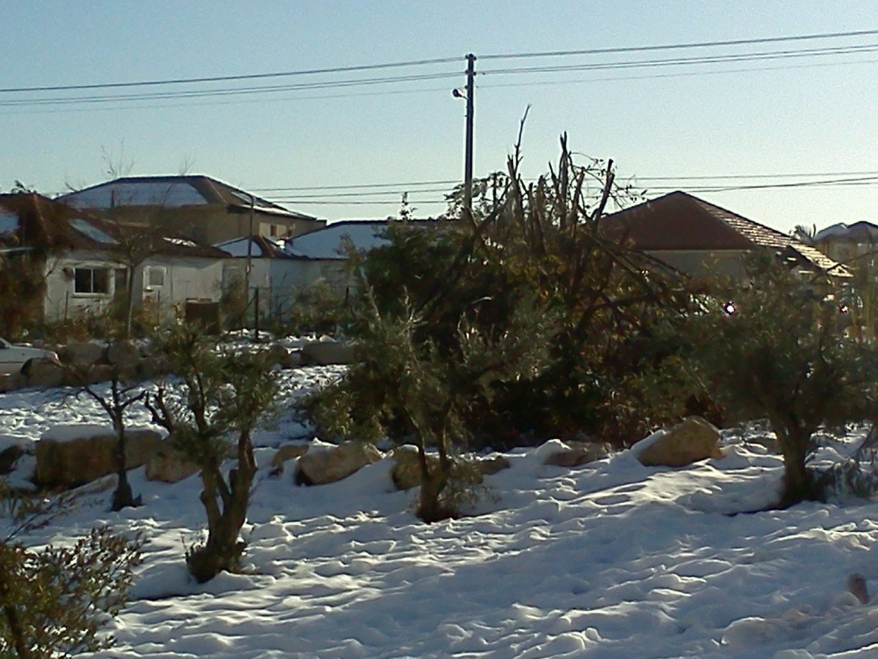 IMG1312 T63