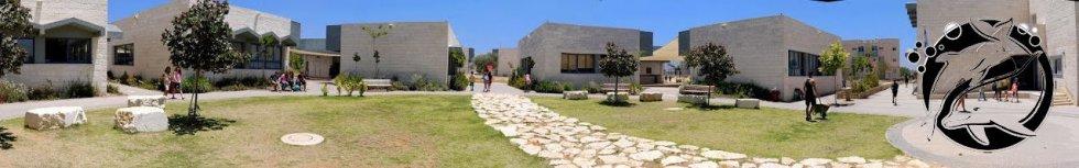 בית הספר הדמוקרטי ע''ש  נדב
