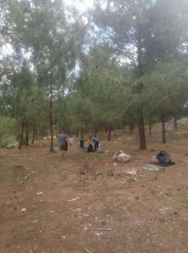 תושבי יעד מתגייסים לטובת ניקוי יער משגב (סובב יעד)