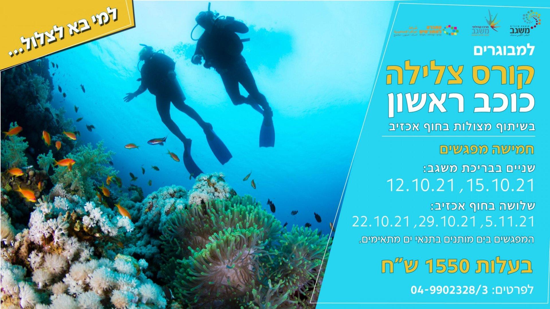 Scuba diving - summer 2021-Club Screen - Adults