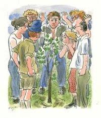 קול קורא - דרוש מתנדב עם ידיים ירוקות