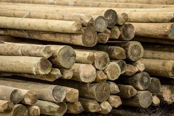 למסירה עמודי עץ ישנים